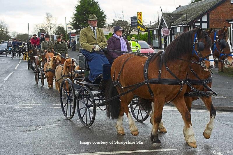 horseparade